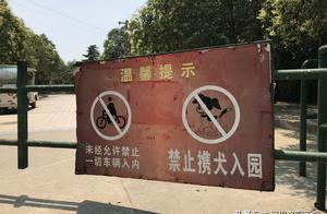 """""""我就是不走"""",洛阳女子公园遛狗遭劝离后起争执"""