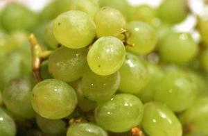 水果真的减肥又美容养颜?吃水果的禁忌,那些年被误导的我们