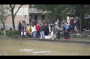 又是别人家的大学!湖南一高校为全校师生开办全鱼宴,2000斤鱼免费吃
