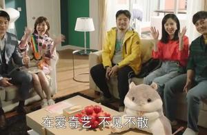 陈赫娄艺潇李佳航回归《爱情公寓5》,36集明年播