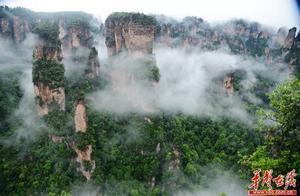 张家界武陵源今天的云海仙境 让中外游客连连尖叫