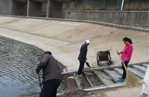 """西海岸铁山水库""""洗澡"""",最多一天清理2吨垃圾"""