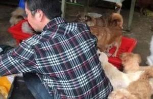 别人抛弃狗的错误,让他两年负债60万 ,7旬父母只能出去打工挣钱……