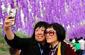 滨州:千年古桑园里唱响文旅融合大戏