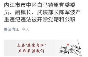 快讯|内江市市中区白马镇原党委委员、副镇长、武装部长陈军波严重违纪违法被开除党籍和公职