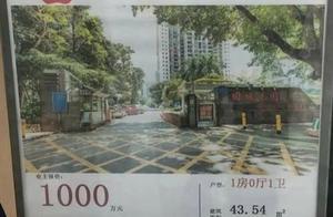 深圳天价学位房:44平挂牌1千万,单价23万/㎡