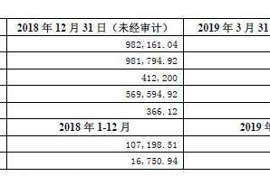 阳光城为两家亏损子公司提供担保 目前担保总额已超900亿
