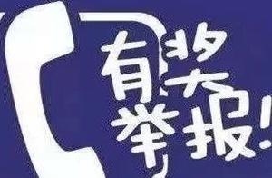 「新消息」宁夏严打此项违法违规行为!举报最高奖励50万元…