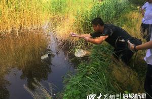"""章丘""""500米河道疑似被污染""""事件追踪:多部门联合行动 拟定三条核查整改措施"""