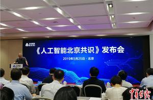 《人工智能北京共识》发布,伦理与规范受关注