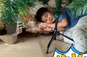 沙溢晒儿子小鱼儿近照 与猫咪躺在一起满脸温柔