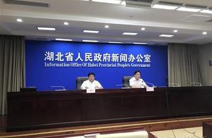 """去年湖北省药品抽检合格率为97%,今年对药品的监管将突出一个""""严""""字"""