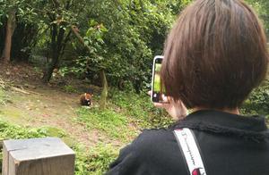 杭州19岁女生流落街头欲轻生,成都这名女子的做法令人动容