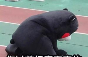 东京奥组委拒绝熊本熊当火炬手:因为它根本不是人类