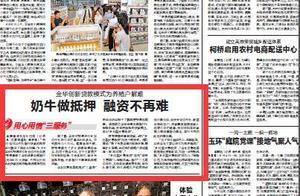 浙江日报丨奶牛做抵押 金华创新贷款模式为养殖户解难