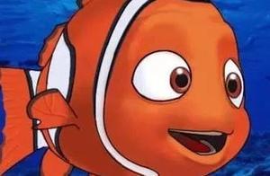 眼角膜被撞穿!元凶竟是一条鱼!这种情况你也可能遇上