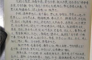 小学生用文言文写的作文