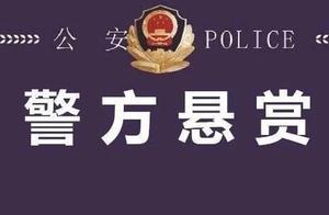 """临沂这个""""黑""""物业恶势力犯罪集团被破获!警方悬赏征集犯罪线索"""