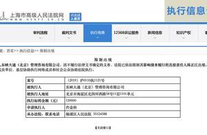 ofo法定代表人陈正江因不履行法律义务被限制出境