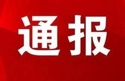 1人被开除党籍4人接受调查,山东通报5起典型问题