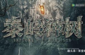 秦岭神树:霍玲吃下了什么东西变成禁婆 血尸墓里发生了什么