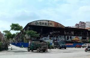 广西花鸟市场火灾已停业两个月!有部门说要整改,有部门说要拆除!听谁的?