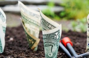 世界上哪种生意稳赚不赔?| 反脆弱创业方法论