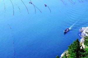 直播丨乡约獐子岛,海上大寨