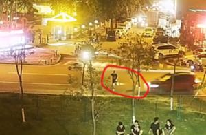 东莞一男子遛狗横穿马路,不幸遭遇车祸身亡