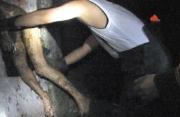 广东开平化粪池现男童尸体现场图曝光!8岁男孩走失后被杀尸体被扔化粪池 化粪池男童死亡原因揭秘