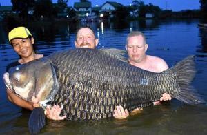 搏斗80分钟钓起巨鱼 打破世界纪录