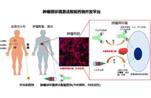 快讯|肿瘤微环境响应型药物研发平台亲合力完成6000万Pre-A 轮融资,磐霖资本领投