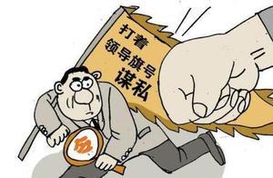 """湖南:严查利用领导干部名义""""打牌子""""办事现象"""