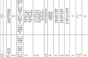 土拍预告|原定7月30日拍卖的庐阳区2宗土地 延期至8月29日出让