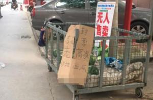 """""""无人销售西瓜摊""""就像是一面多棱镜"""