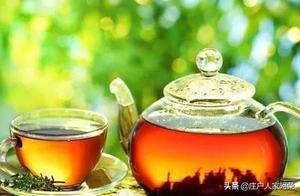 常用茶汤来浇这些花,再不用担心土壤问题,一举多得