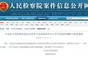 湖南宁远持刀砍杀4名小学生嫌犯被批捕,致2死2伤