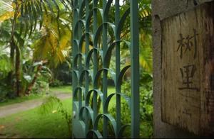 """福建最美民宿季,厦门的美不仅在海里,也在""""树里"""""""