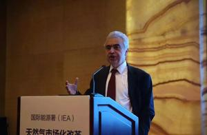 国际能源署署长法提赫·毕罗尔为中国天然气市场化改革这样支招