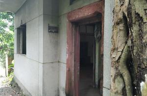 探访东莞无人屋,本地人建造,如今荒弃老村
