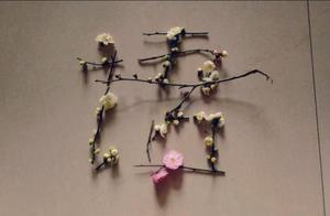 春天描写树木的句子 描写春天树木的诗句