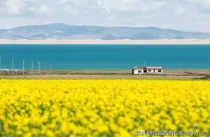 西宁小驴-史上最全青海湖攻略,满满都是干货!