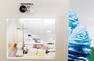 """""""稻米造血""""专利贷了7000万 武汉一批企业通过专利质押贷款发展壮大"""