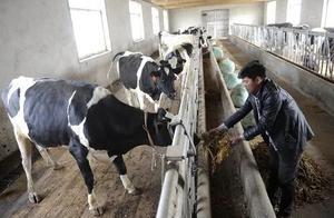 日本开始发展无人化农业;业内人士:区块链可助力乡村振兴