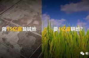 虚假数据还要祸害多少中国人?