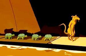 不同版本的忍者神龟,带你了解斯普林特的身世之谜