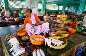印度经济数据造假?