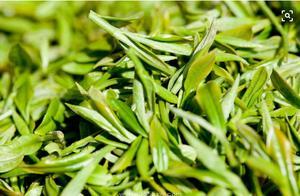 它创造了中国茶叶拍卖历史最高价格,二两茶叶拍出15万元的天价