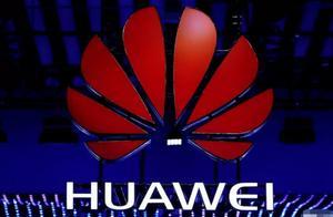 5G订单数量再刷新!华为份额占据全球第一名,网友:太棒了