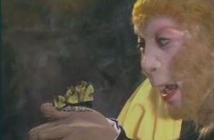 猪八戒拔猪毛为何不能变其它东西?孙悟空猴毛有什么不一样?